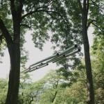 Bewegter Wind, 2010